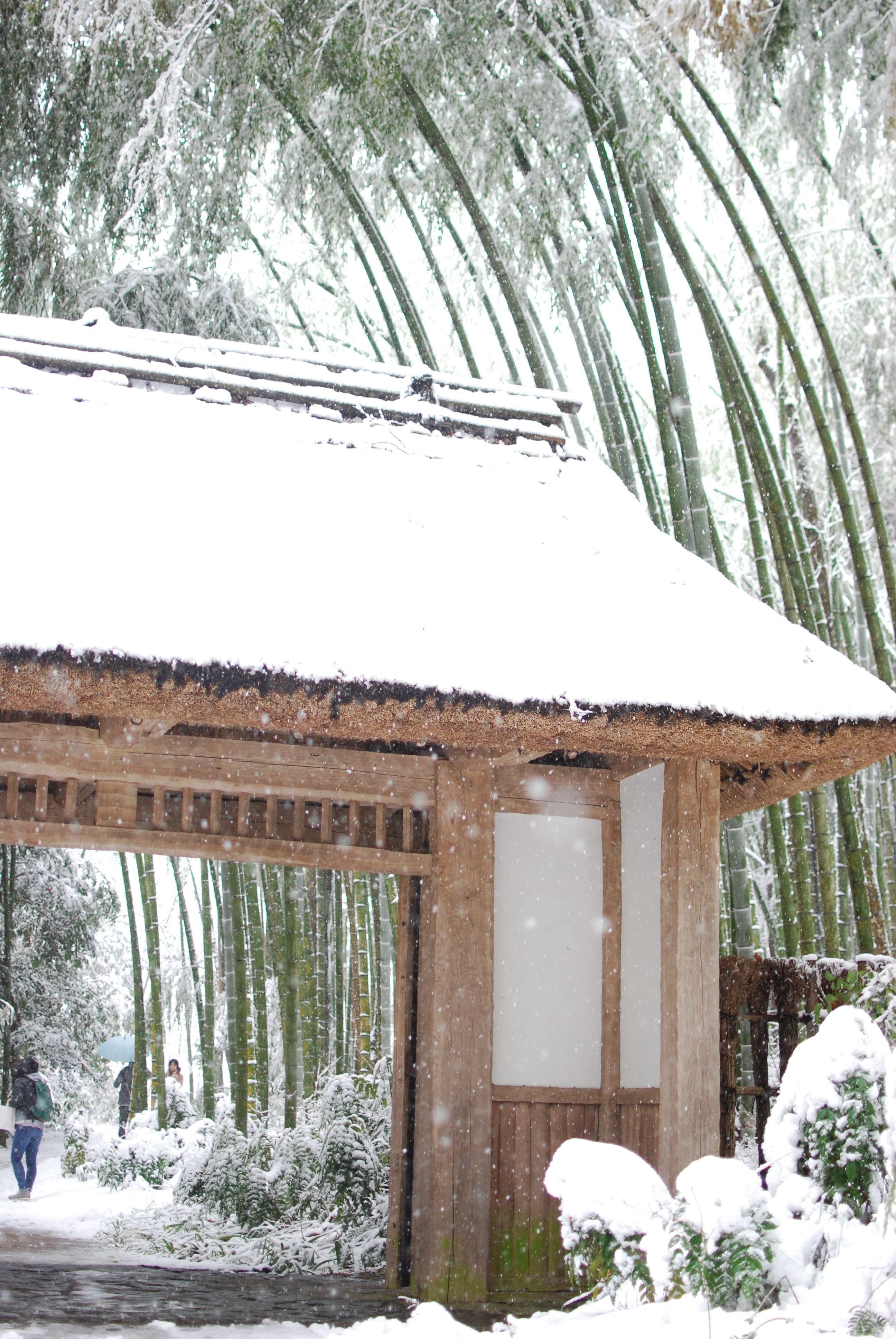 今年最後の雪かな!?