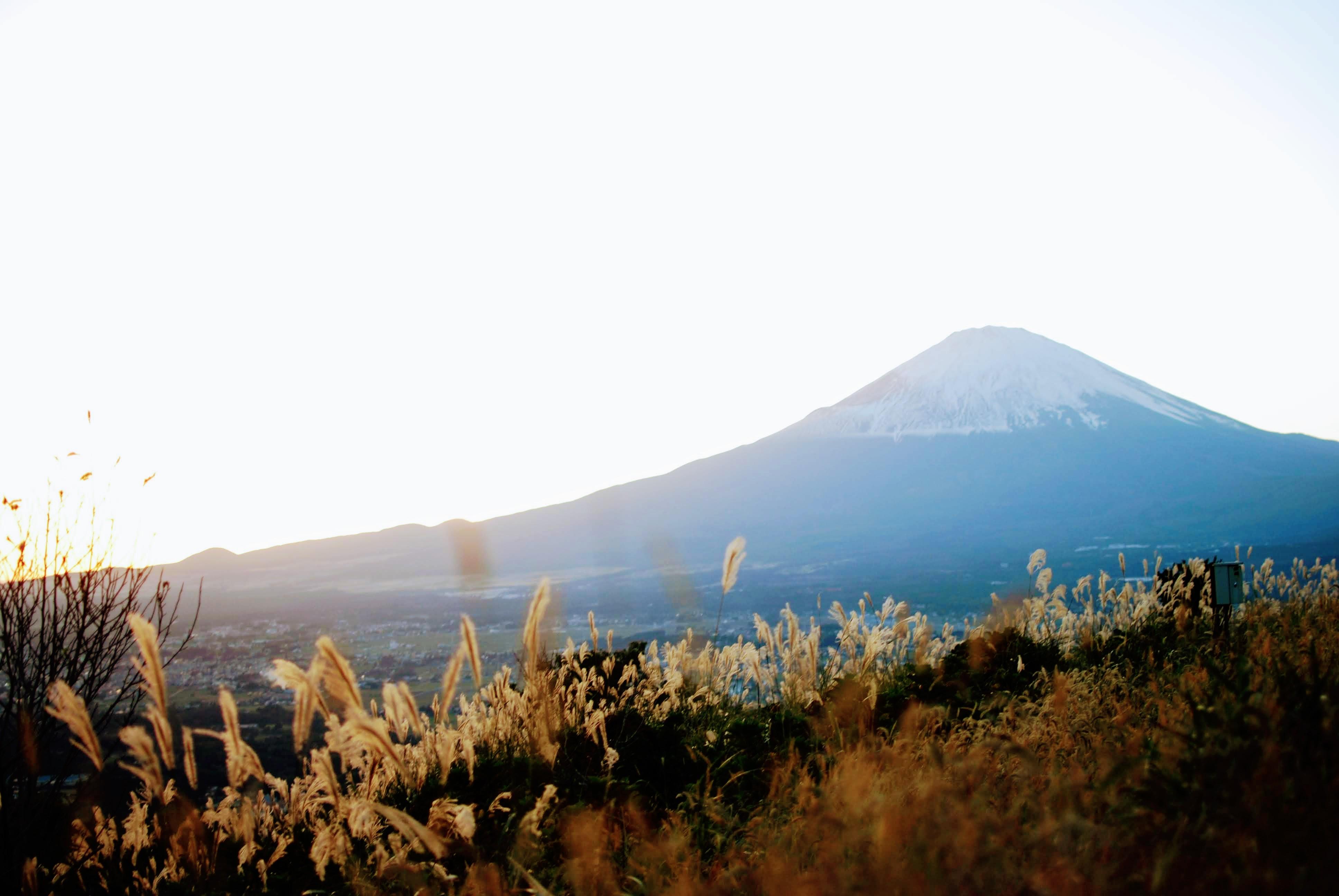 富士山の紅葉が始まりました!
